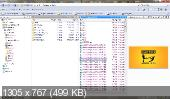 Directory Opus 10.0.4.0.4444 (x32/x64) + Portable (2012) Русский