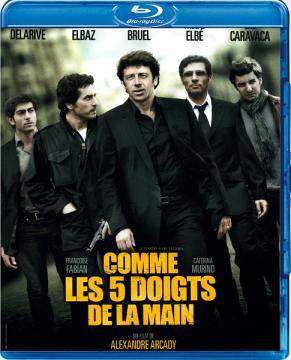 Как пять пальцев / Comme les cinq doigts de la main (2010) BDRip 1080p