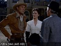 Охранник дилижансов / Riding Shotgun (1954) DVDRip