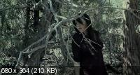 Монстры в лесах / Monsters in the Woods (2012) DVDRip (ENG)
