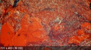 Какими Земля сделала нас / How Earth Made Us (2010) HDRip