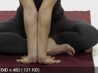 Голдман Т. - Йога-Терапия. Пояснично-крестцовый отдел позвоночника. Шейно-грудной отдел позвоночника (2008) DVDRip