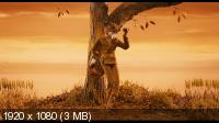 Бесподобный мистер Фокс / Fantastic Mr. Fox (2009) BD Remux + BDRip 1080p/720p + HDRip 1400/700 Mb
