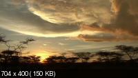 Золотой Глобус. 109: Танзания. Среди бескрайних саванн (2012) DVDRip
