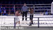 Бокс.Денис Бойцов - Доминик Гуинн / 2012 / SATRip
