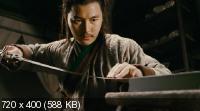 ������ ����� / Reign of Assassins (2010) DVD9 / DVD5 + DVDRip 1400/700 Mb