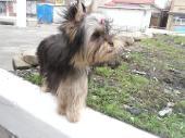 http://i35.fastpic.ru/thumb/2012/0415/76/1474e18ef1eb78ee5a7a4001713cbf76.jpeg