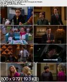 The Big Bang Theory [S05E22] HDTV.XviD-FQM